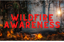 Wildfire Awareness